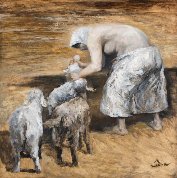 岑龍-小羔羊|The Lamb