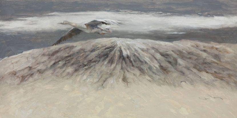 岑龍-尋找一片雲-II|Looking for a Cloud-II