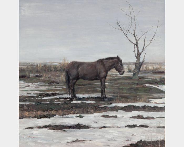 岑龍-殘雪|The Remaining Snow