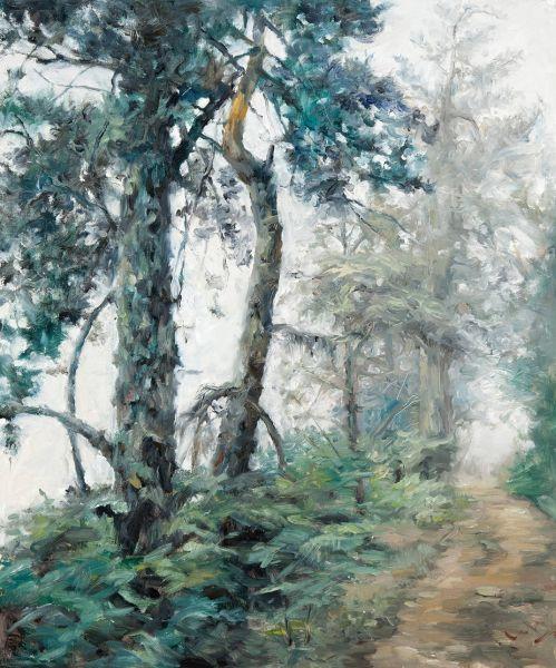 岑龍-霧靄山林|Forest in Fog