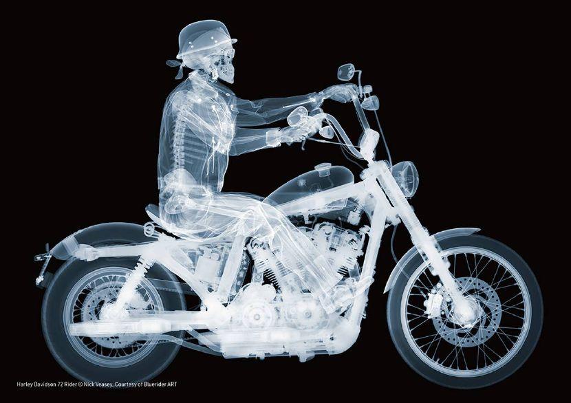 尼克•維西- Harley Davidson 72 Rider
