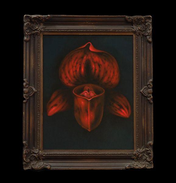 呂浩元-紅蘭嬌 Red Orchid