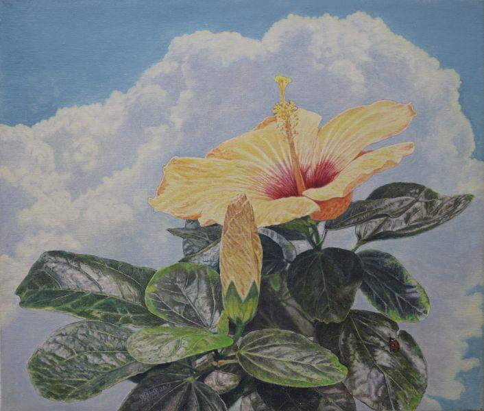 周錫安-雲彩下的黃色朱槿花 The Hibiscus
