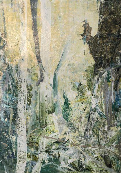 許聖泓-森林16