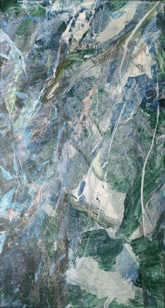 許聖泓-森林19
