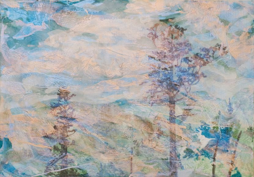 許聖泓-森林28