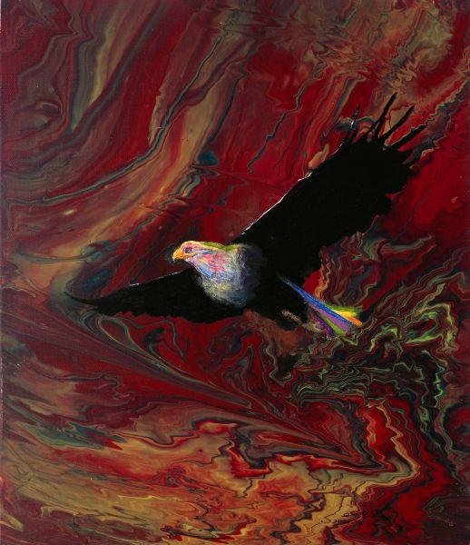 陳國祥-鷹 eagle