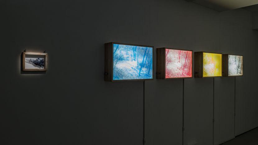 丘智偉-UTOPIA Light Boxes