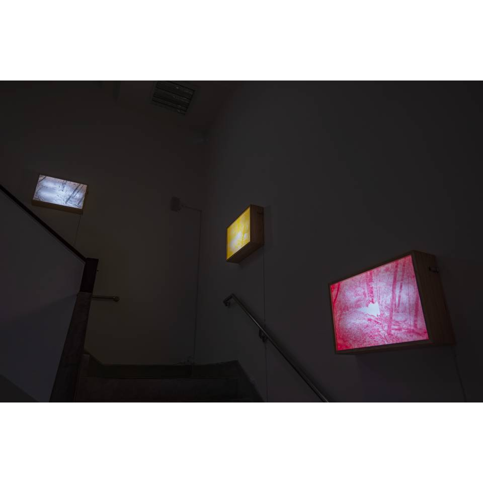 UTOPIA Light Boxes