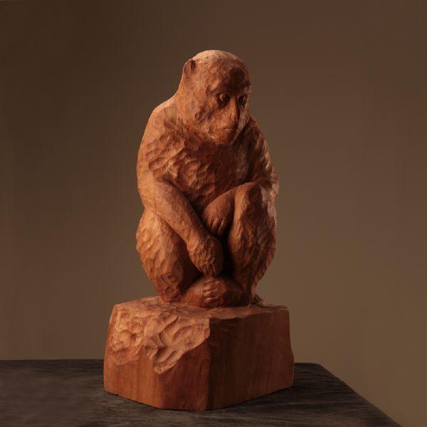 莊丁坤-獼猴