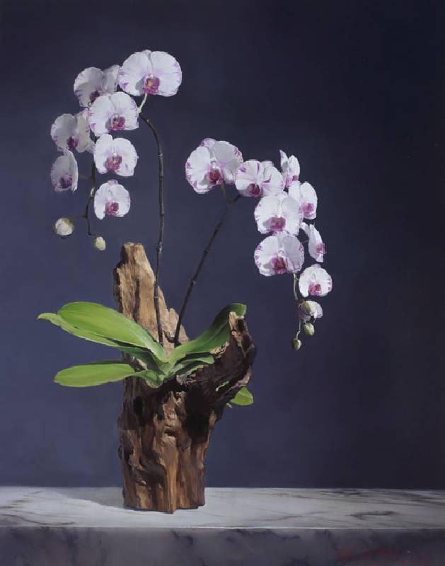 標題:聖光的禮讚尺寸:56.5*44.6 cm 年代:2018    材質:油畫/畫板
