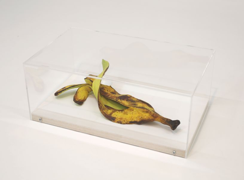 笠谷耕二 - Green Banana Skin 2,2019