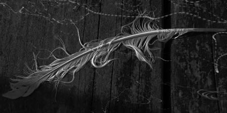 葉姿吟(行云)-沉默者的隱喻