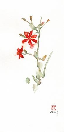沈鈺華-射干II