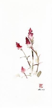 沈鈺華-青葙 IV