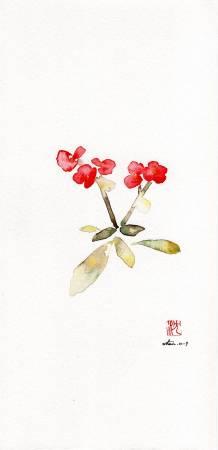 沈鈺華-麒麟花 II