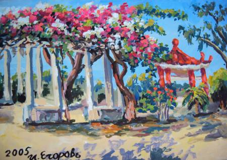 Ivan Yehorov-九重葛采蔭 Bougainvillea Shade