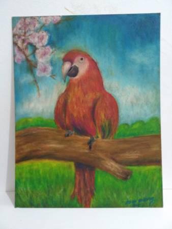 李孟勳-巴西鸚鵡系列1