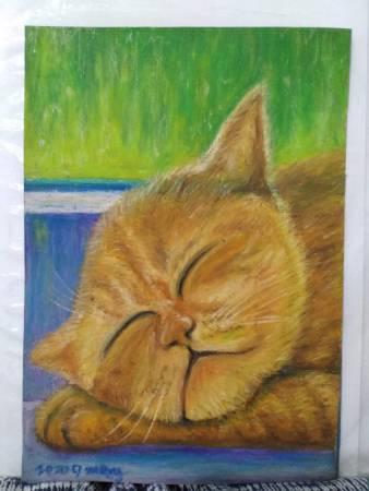 李孟勳-鬧中取靜的貓