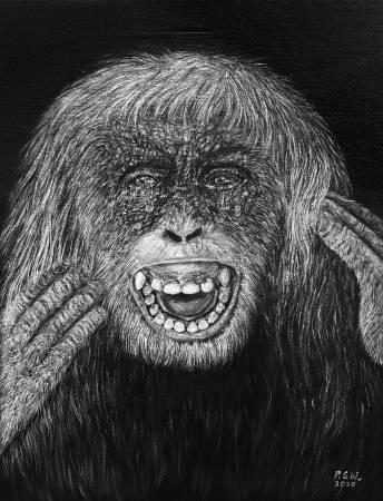 P.S Wu-哭泣的紅毛猩猩 Crying Orangutan (大哭)