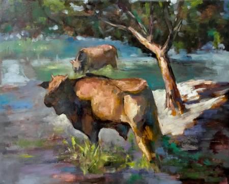 胡志誠-陽光灑在牛身上