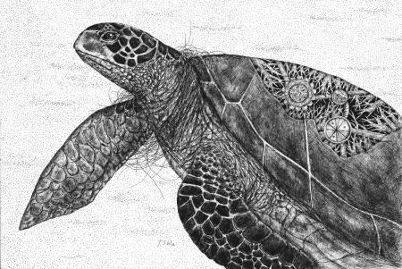 P.S Wu-人造海龜