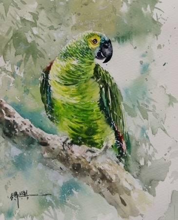 劉得興-鸚鵡