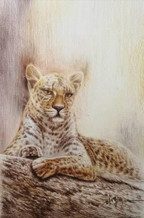 劉得興-豹