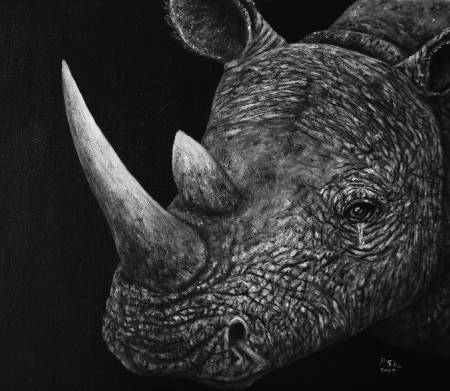 P.S Wu-哭泣的犀牛 Crying Rhinoceros