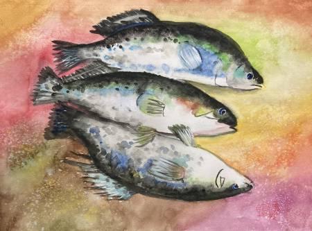 Win-繽紛三魚