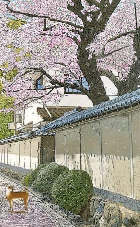 林宗範 -聽春天在唱歌