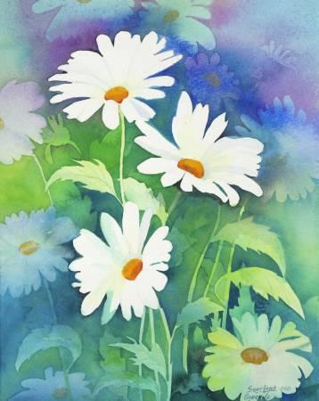 葛拉娜-波斯菊 Daisies