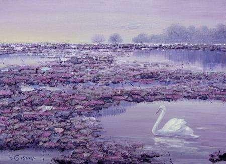 葛拉娜-Swan, twilights