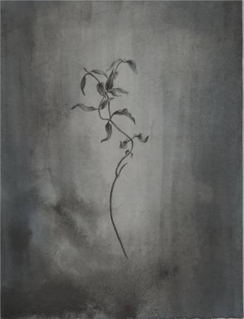 鍾麗香-最深的記憶