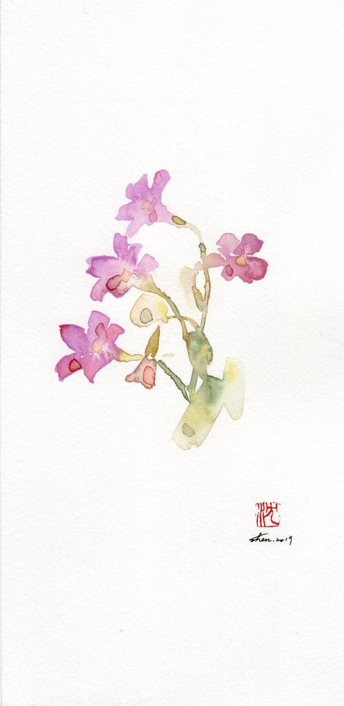 沈鈺華-酢醬草III
