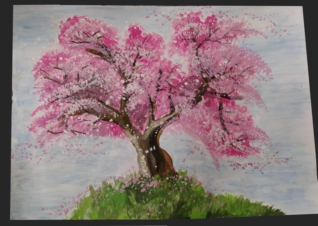 許煥林-櫻花樹盛開