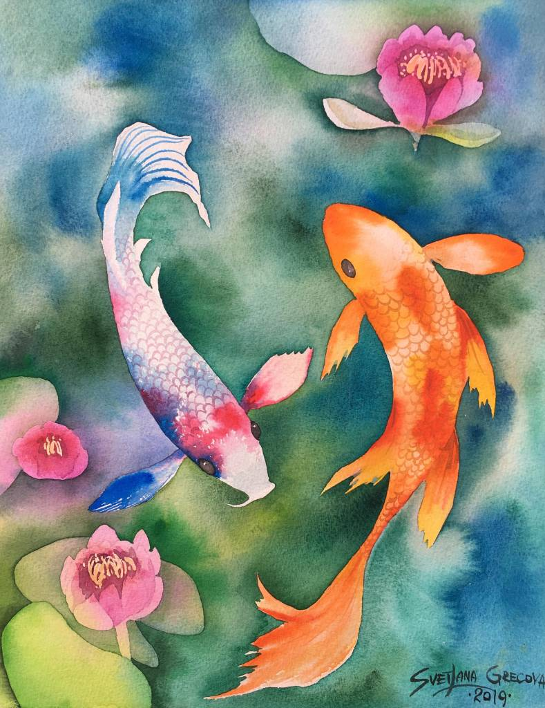 葛拉娜-Elegant colorful Koi