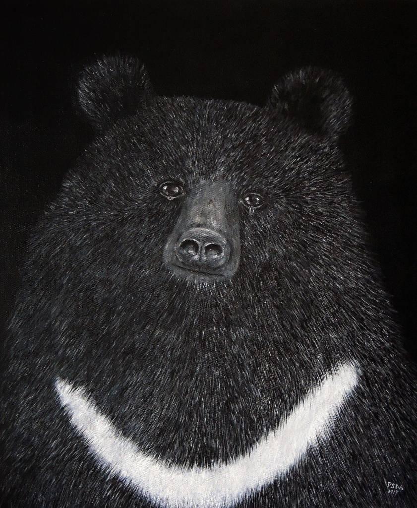 P.S Wu-哭泣的台灣黑熊 Crying Moon Bear