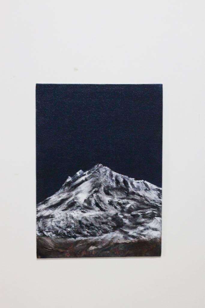 廖鈺娟-山景