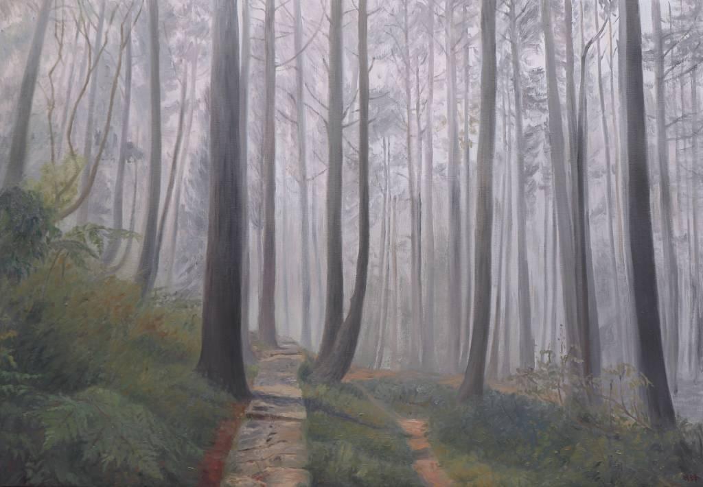 朱珉鋒-先靈寄身的森林