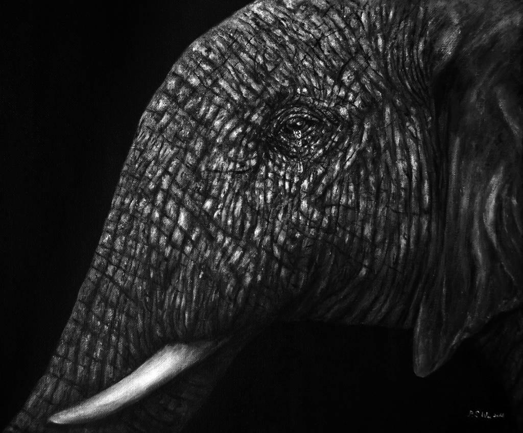 P.S Wu-哭泣的大象 Crying Elephant