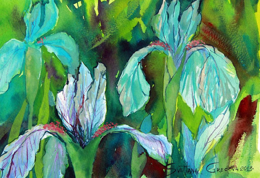 葛拉娜-鳶尾花 Irises