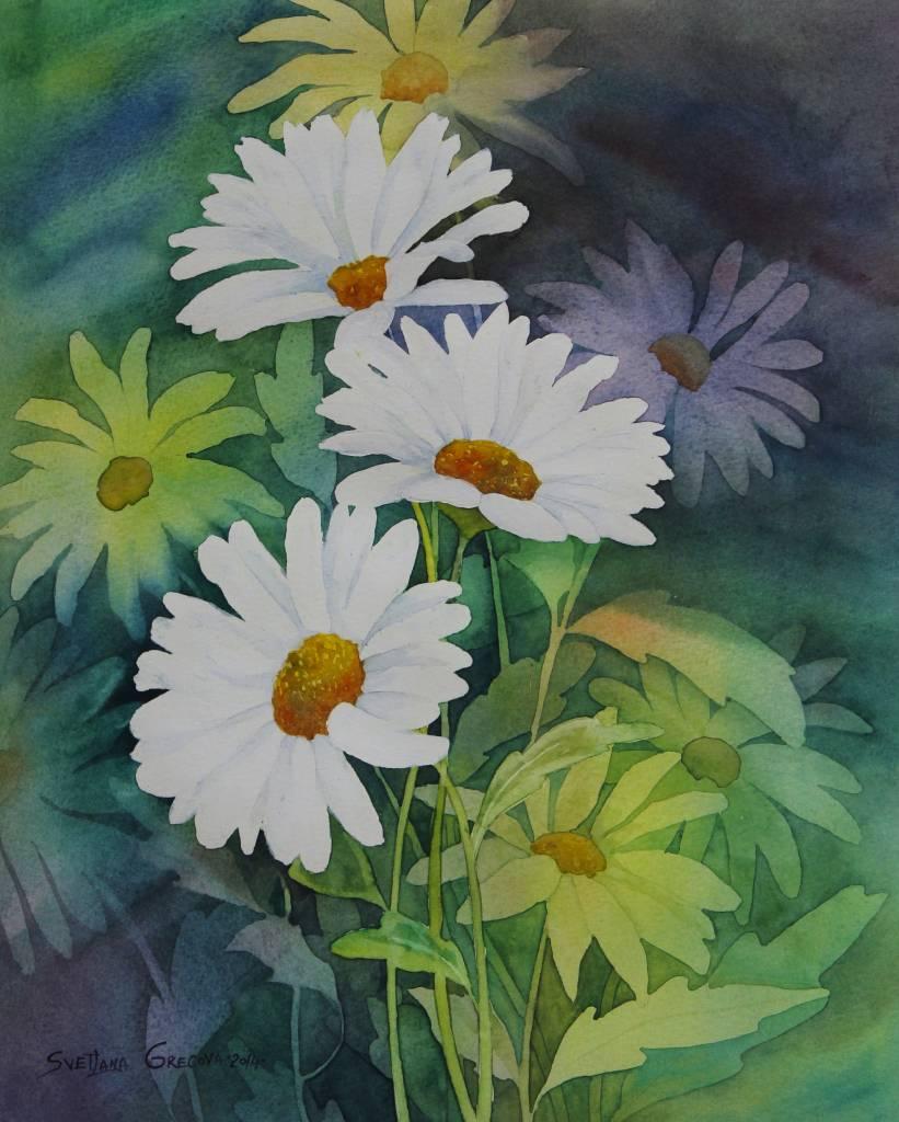 葛拉娜-Daisies bouquet