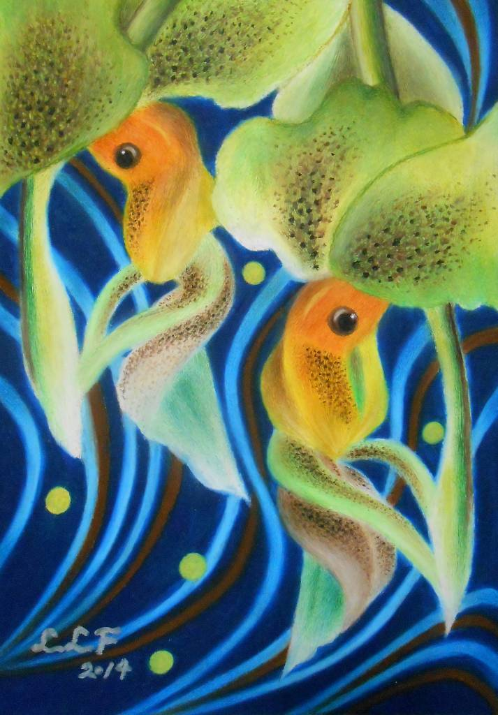 林俐斐-雙魚第二號