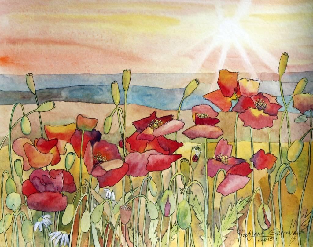 葛拉娜-Poppies field