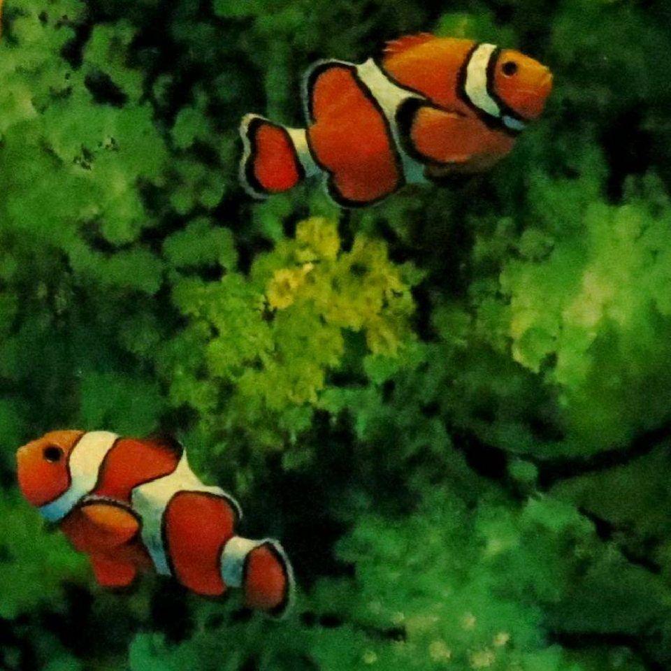 小丑魚局部。